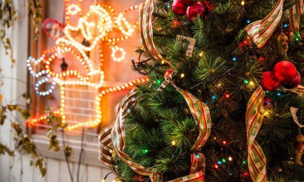 Noël avec les Babys, Eveils et Poussins